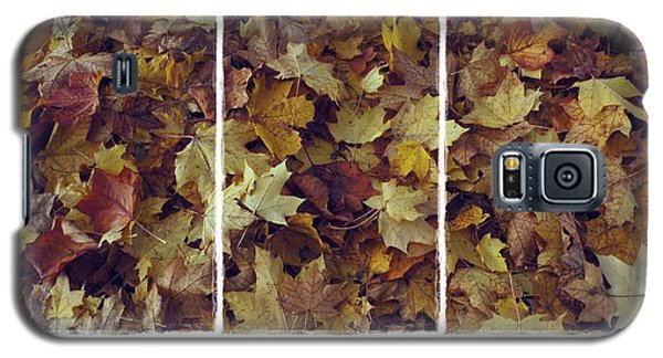 Heavenly Leaves Triptych Galaxy S5 Case