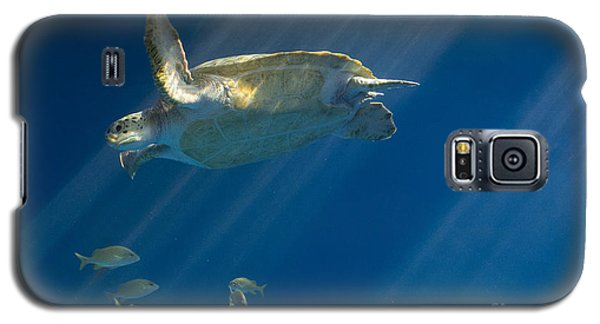 Heavenly Turtle Galaxy S5 Case