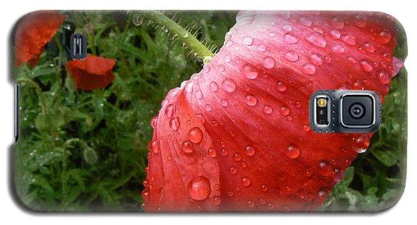 Heavy Head Poppy Galaxy S5 Case