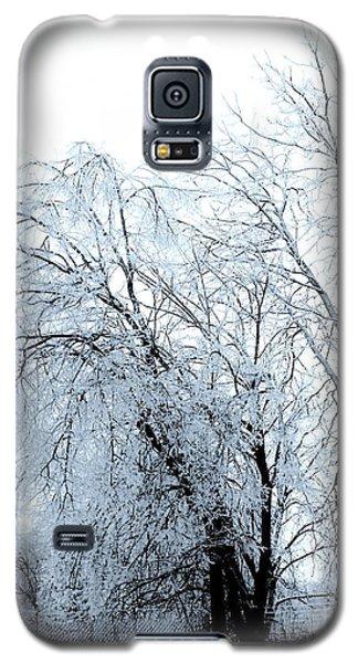 Heavy Ice Tree Redo Galaxy S5 Case
