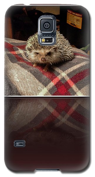 Hedgehog 5 Galaxy S5 Case