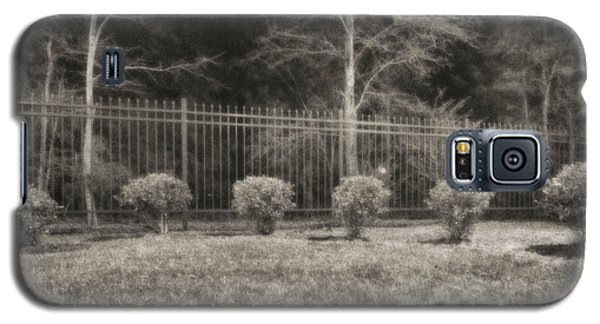 Hedges And Trees Galaxy S5 Case by J Riley Johnson