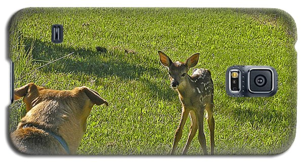 Galaxy S5 Case featuring the photograph Heidi And The Fawn by Judy  Johnson