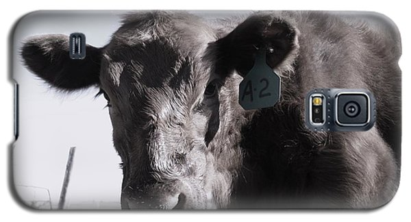 Heifer Galaxy S5 Case by J L Zarek