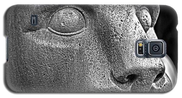 Heinz Warneke's Mountain Lion Galaxy S5 Case