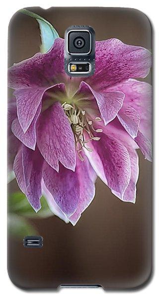 Helibores Galaxy S5 Case