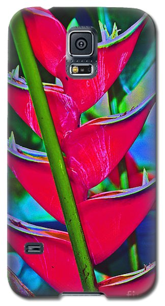 Heliconia Abstract Galaxy S5 Case
