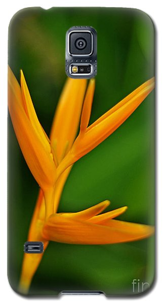 Heliconia Photo Galaxy S5 Case