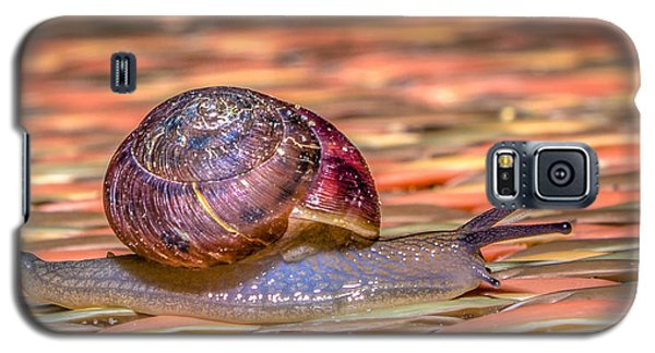 Galaxy S5 Case featuring the photograph Helix Aspersa by Rob Sellers
