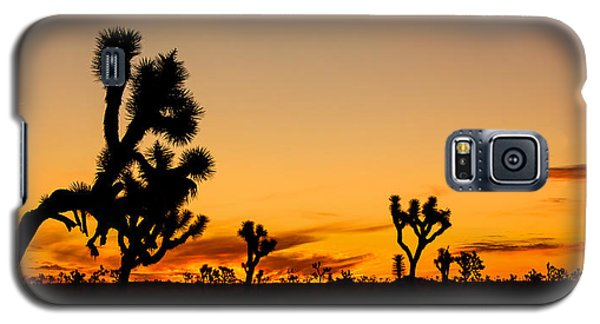 Hello Joshua Tree Galaxy S5 Case