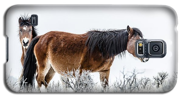 Hello Galaxy S5 Case by Yeates Photography