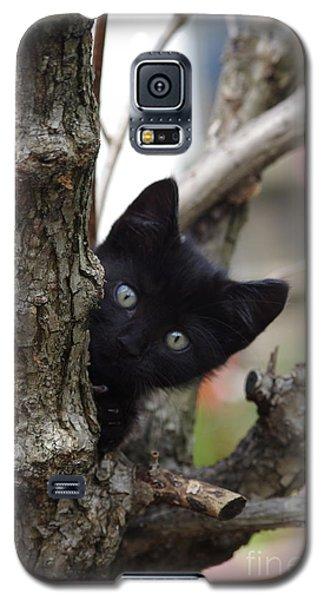Helloooo Galaxy S5 Case