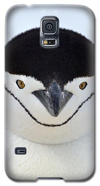 Helmet Galaxy S5 Case