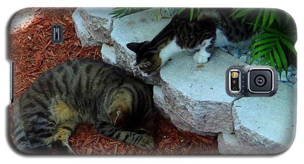 Hemingway Cats Galaxy S5 Case