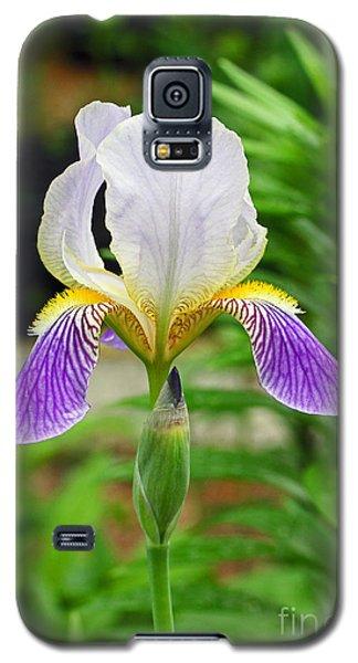 Her Majesty Iris  Galaxy S5 Case by Steve Augustin