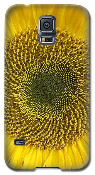 Here Comes The Sun.... Galaxy S5 Case