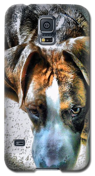 Galaxy S5 Case featuring the photograph Here's Lookin Atchya by Robert McCubbin