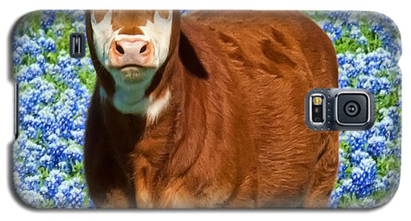 Heres Looking At You Kid - Calf With Bluebonnets In Texas Galaxy S5 Case by David Perry Lawrence