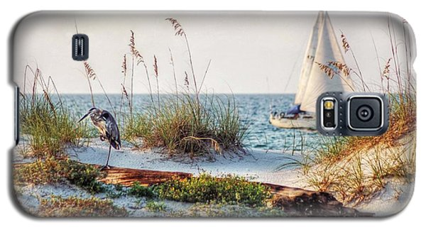 Heron And Sailboat Galaxy S5 Case
