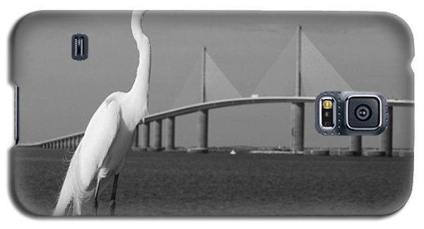 Heron And Skyway Galaxy S5 Case by Daniel Woodrum