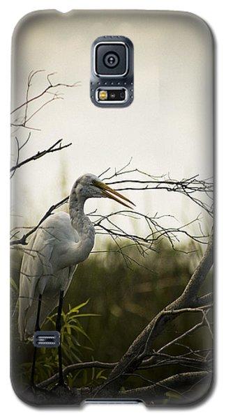 Heron At Dusk Galaxy S5 Case