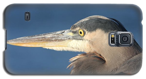 Galaxy S5 Case featuring the photograph Heron Close-up by Christiane Schulze Art And Photography