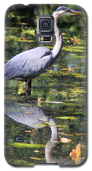 Galaxy S5 Case featuring the photograph Heron Hunter by Kenny Glotfelty
