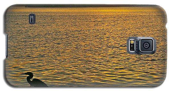 Heron Hunting At Sunrise Galaxy S5 Case by Joan McArthur