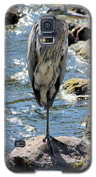 Galaxy S5 Case featuring the photograph Heron On One Leg by Kenny Glotfelty