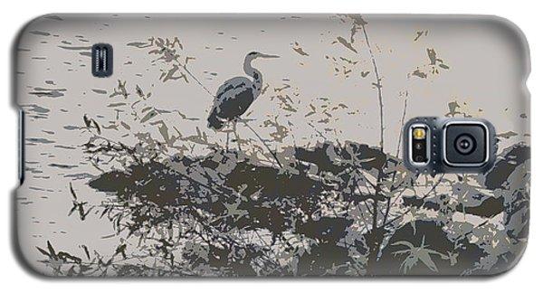 Silent Lake Galaxy S5 Case