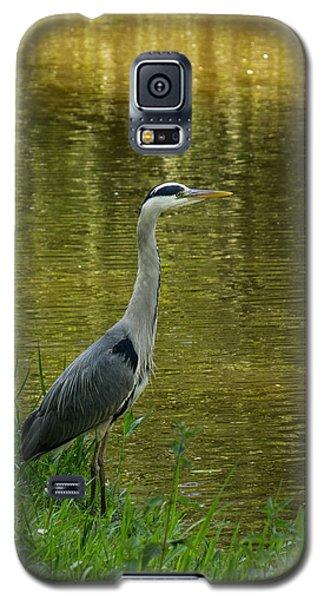 Heron Statue Galaxy S5 Case
