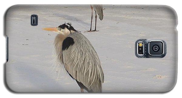 Galaxy S5 Case featuring the photograph Heron Two by Deborah DeLaBarre