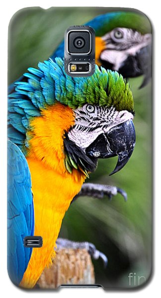 Galaxy S5 Case featuring the photograph He's Always Hogging The Spotlight by Kathy Baccari