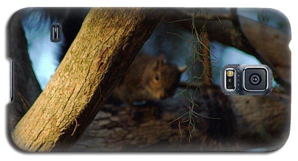 He's Watching You Galaxy S5 Case by Daniel Woodrum