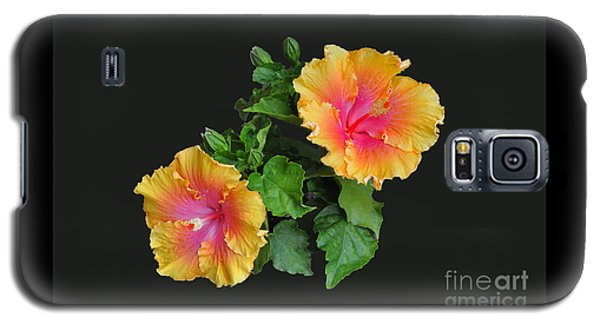 Hibiscus Duo Galaxy S5 Case