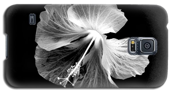 Hibiscus In Black And White Galaxy S5 Case