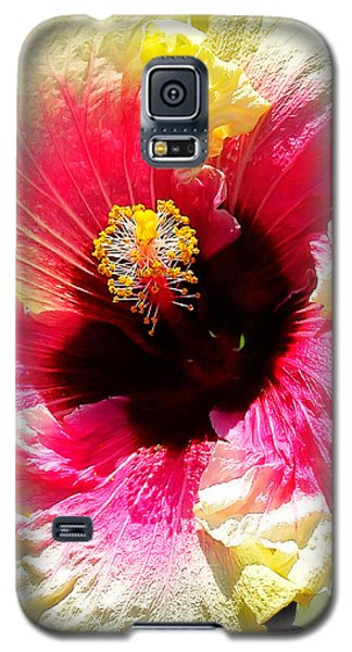 Hibiscus In Bloom Galaxy S5 Case