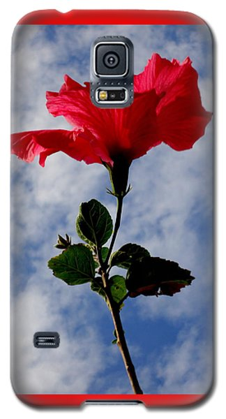 Hibiscus In The Sky Galaxy S5 Case