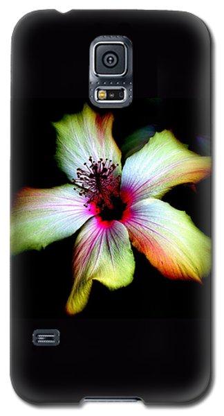 Galaxy S5 Case featuring the photograph Hibiscus by Jodie Marie Anne Richardson Traugott          aka jm-ART
