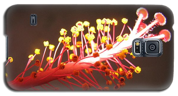 Galaxy S5 Case featuring the photograph Hibiscus by Mary Ellen Mueller Legault