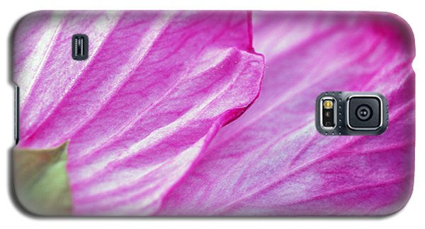 Galaxy S5 Case featuring the photograph Hibiscus Petals In Pink by Lila Fisher-Wenzel