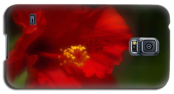 Galaxy S5 Case featuring the photograph Hibiscus Softly 2 by Travis Burgess