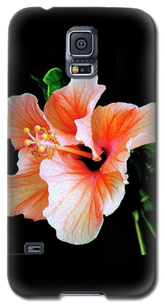 Hibiscus Spectacular Galaxy S5 Case by Ben and Raisa Gertsberg