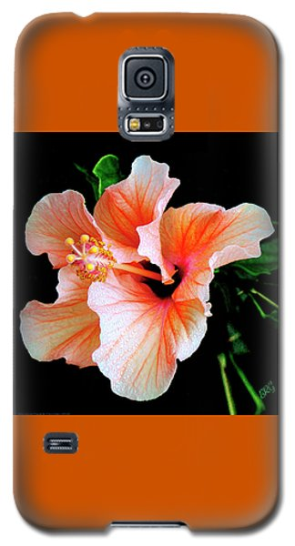Hibiscus Spectacular Galaxy S5 Case