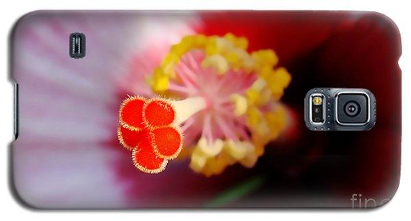 Hibiscus Stigma Pads Galaxy S5 Case