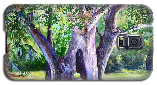 Hickory Hole Galaxy S5 Case by AnnaJo Vahle