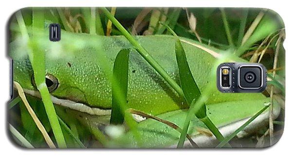 Hidden Frog Galaxy S5 Case