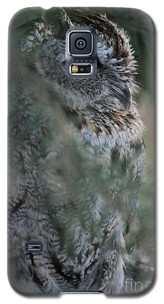 Galaxy S5 Case featuring the photograph Hidden by Sharon Elliott