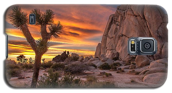 Hidden Valley Rock - Joshua Tree Galaxy S5 Case