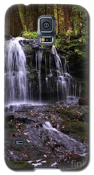 Hidden Waterfalls Of Wayne County I Galaxy S5 Case